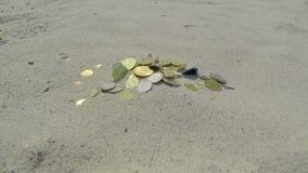 Ο χρόνος είναι χρήματα απόθεμα βίντεο