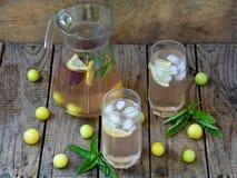 Ο χυμός ή ο χυμός με τους κύβους πάγου και μια φέτα του λεμονιού με ένα κίτρινους δαμάσκηνο και έναν βασιλικό Στοκ Εικόνες