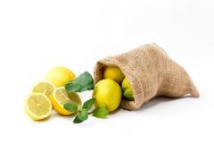 Ο χυμός πίνει τη λεμονάδα με τη μέντα Στοκ Φωτογραφία