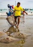 Ο ψαράς μεταφέρει τους πλευρονήκτες επάνω στην παραλία Στοκ φωτογραφία με δικαίωμα ελεύθερης χρήσης