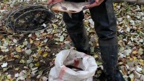Ο ψαράς με τα φρέσκα ψάρια απόθεμα βίντεο