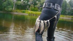 Ο ψαράς λογχών παρουσιάζει του γλυκού νερού ψάρια στη ζώνη υποβρύχιου μετά από να κυνηγήσει στο δασικό ποταμό, οπισθοσκόπο στοκ φωτογραφίες