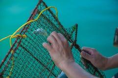 Ο ψαράς προσπαθεί να ανοίξει τα παγιδευμένα ψάρια από το δίχτυ του ψαρέματος με το υπόβαθρο της μπλε θάλασσας Στοκ Εικόνες