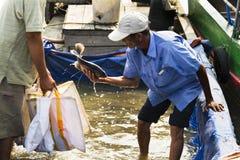 Ο ψαράς πωλεί τα ψάρια στη βάρκα στις 14 Φεβρουαρίου 2012 στο Tho μου, Βιετνάμ Β Στοκ Εικόνα