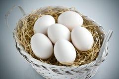 Ολόκληρα άσπρα αυγά στο άσπρο καλάθι αχύρου στοκ εικόνες με δικαίωμα ελεύθερης χρήσης