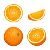 Ολόκληρα και τεμαχισμένα πορτοκαλιά φρούτα που απομονώνονται στο λευκό επίσης corel σύρετε το διάνυσμα απεικόνισης Στοκ φωτογραφία με δικαίωμα ελεύθερης χρήσης