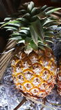 ολόκληρα φρούτα ανανά της Ταϊλάνδης Στοκ φωτογραφία με δικαίωμα ελεύθερης χρήσης
