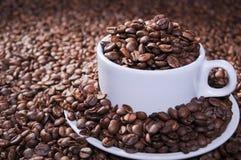 Ολόκληρα ψημένα φασόλια καφέ στο κύπελλο Στοκ εικόνα με δικαίωμα ελεύθερης χρήσης