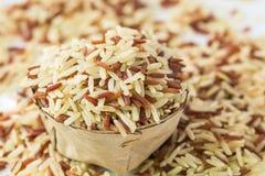 Ολόκληρο ρύζι σιταριών Στοκ Φωτογραφία