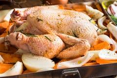 Ολόκληρο το κοτόπουλο καρύκεψε άψητο στο δίσκο ψησίματος με τα τεμαχισμένα κρεμμύδια πατατών καρότων λαχανικών, δεντρολίβανο Στοκ φωτογραφία με δικαίωμα ελεύθερης χρήσης
