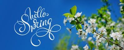 Ο όμορφος ανθίζοντας κήπος άνοιξη σε ένα υπόβαθρο του μπλε ουρανού και το κείμενο γειά σου αναπηδούν Εγγραφή καλλιγραφίας στοκ φωτογραφίες