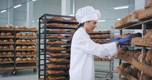 Ο όμορφος αρτοποιός γυναικών τοποθετεί το ψημένο φρέσκο ψωμί σε παραγγελία που που κινεί το ράφι πολύ την συγκέντρωσε που εργάζετ φιλμ μικρού μήκους