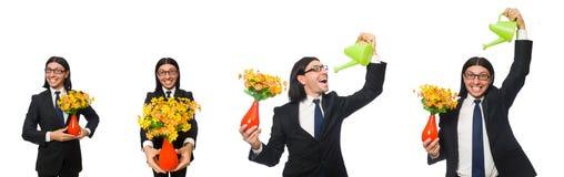 Ο όμορφος επιχειρηματίας με το δοχείο λουλουδιών που απομονώνεται στο λευκό στοκ εικόνα