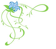 Ο όμορφος μπλε κρίνος ανθίζει την απεικόνιση 2 ελεύθερη απεικόνιση δικαιώματος