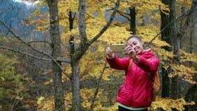 Ο όμορφος οδοιπόρος γυναικών στο κόκκινο σακάκι με το μικρό σακίδιο πλάτης στέκεται στο κίτρινο υπόβαθρο ξύλων φθινοπώρου χρησιμο απόθεμα βίντεο