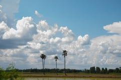 Ο όμορφος ουρανός και θα μπορούσε Στοκ φωτογραφία με δικαίωμα ελεύθερης χρήσης