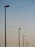 οδός λαμπτήρων Στοκ Εικόνες
