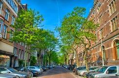 Οδός με τα δέντρα και τα κόκκινα σπίτια τούβλων στο Άμστερνταμ, Ολλανδία, Ν Στοκ Εικόνες