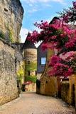 Οδός με τα λουλούδια και το μεσαιωνικό πύργο, Dordogne, Γαλλία Στοκ Εικόνες