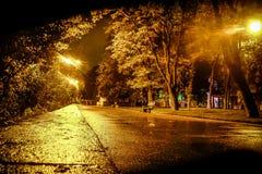 Οδός νύχτας μετά από τη βροχή στοκ εικόνες