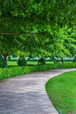 Οδός σε πράσινο Στοκ Εικόνες
