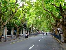 Οδός της Σαγκάη Στοκ εικόνες με δικαίωμα ελεύθερης χρήσης