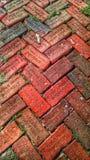 Οδός τούβλου στην πόλη στοκ φωτογραφία με δικαίωμα ελεύθερης χρήσης