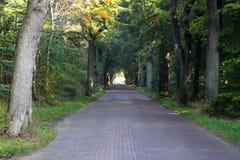 Οδός τούβλου στο μικρό χωριό στις Κάτω Χώρες Στοκ Εικόνα