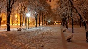 Οδός χειμερινού βραδιού στο χιόνι στοκ εικόνα με δικαίωμα ελεύθερης χρήσης