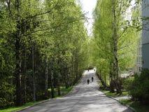 οδός Στοκ εικόνες με δικαίωμα ελεύθερης χρήσης