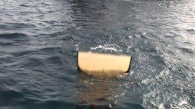 Ο δύτης γυναικών βουτά στα βατραχοπέδιλα υποβρύχια στη Ερυθρά Θάλασσα φιλμ μικρού μήκους