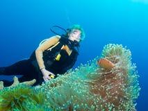 Ο δύτης συναντιέται clownfish Στοκ εικόνα με δικαίωμα ελεύθερης χρήσης