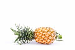 Ο ώριμος ανανάς απομονώνει το γλυκό γούστο στα άσπρα τρόφιμα φρούτων ανανά υποβάθρου υγιή Στοκ εικόνα με δικαίωμα ελεύθερης χρήσης