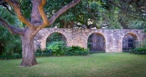 Ο Alamo μπροστινός τοίχος Στοκ Φωτογραφία