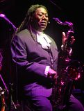 Ο Clarence Clemons αποδίδει στη συναυλία στοκ εικόνες