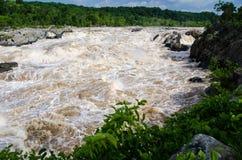 Ο Potomac ποταμός στην πλημμύρα στις μεγάλες πτώσεις, Μέρυλαντ Στοκ Φωτογραφίες