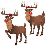 Ο Rudolph ο τάρανδος δύο θέτει Στοκ φωτογραφίες με δικαίωμα ελεύθερης χρήσης