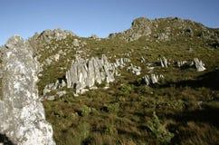 Ο Sir Lowrys Pass Νότια Αφρική στοκ φωτογραφία
