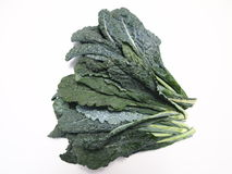 Ο Tuscan Kale στοκ φωτογραφίες