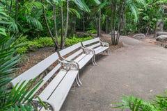 Πάγκοι κήπων Στοκ Εικόνες