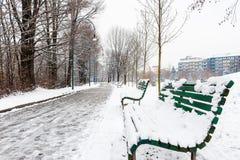 Πάγκοι στο χώρο στάθμευσης Στοκ Εικόνες