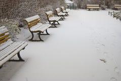 πάγκοι χιονώδεις Στοκ Εικόνες