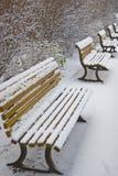 πάγκοι χιονώδεις Στοκ Εικόνα