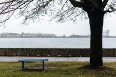 Πάγκος για τη μοναξιά και τη μοναξιά στις ακτές της θάλασσας της Βαλτικής Στοκ Εικόνες