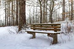 Πάγκος κάτω από το χιόνι Στοκ Φωτογραφίες