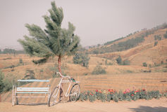 Πάγκος και ποδήλατο με τη θέα βουνού Στοκ φωτογραφία με δικαίωμα ελεύθερης χρήσης