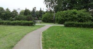 Πάγκος και φανάρι στο πάρκο απόθεμα βίντεο