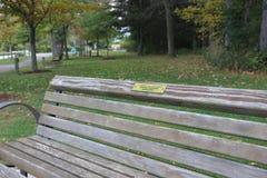 πάγκος ξύλινος Στοκ Φωτογραφία