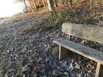 Πάγκος πάρκων μια παγωμένη ημέρα στοκ εικόνες