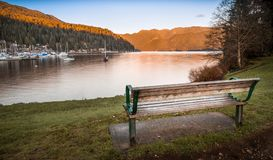 Πάγκος πάρκων που αγνοεί το βαθύ όρμο, στο βόρειο Βανκούβερ στοκ εικόνα με δικαίωμα ελεύθερης χρήσης